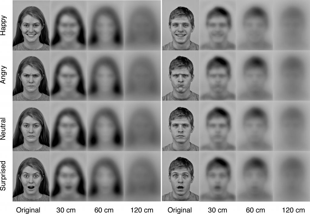 počítačová simulace, jak děti vnímají výrazy různě vzdálené lidské tváře