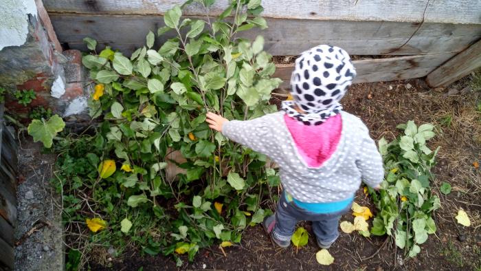 Zakrývání domečku listím