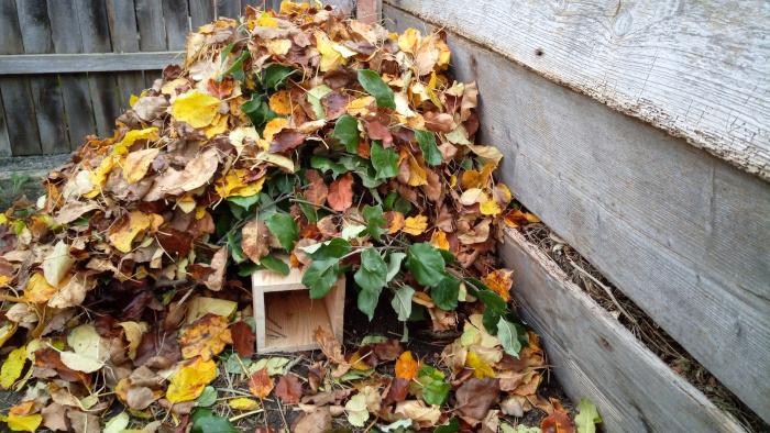 Zakrytý domeček listím