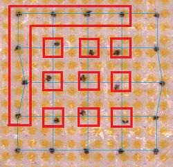 Struktura OID kódu
